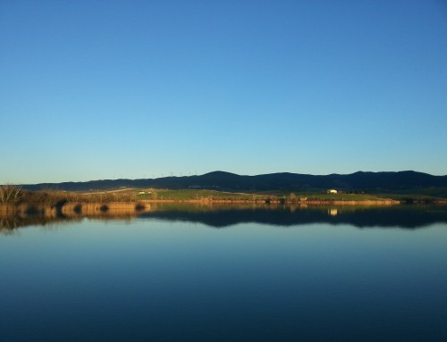 Cronoche del Lago